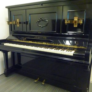Schiedmayer Piano, Hoog Model